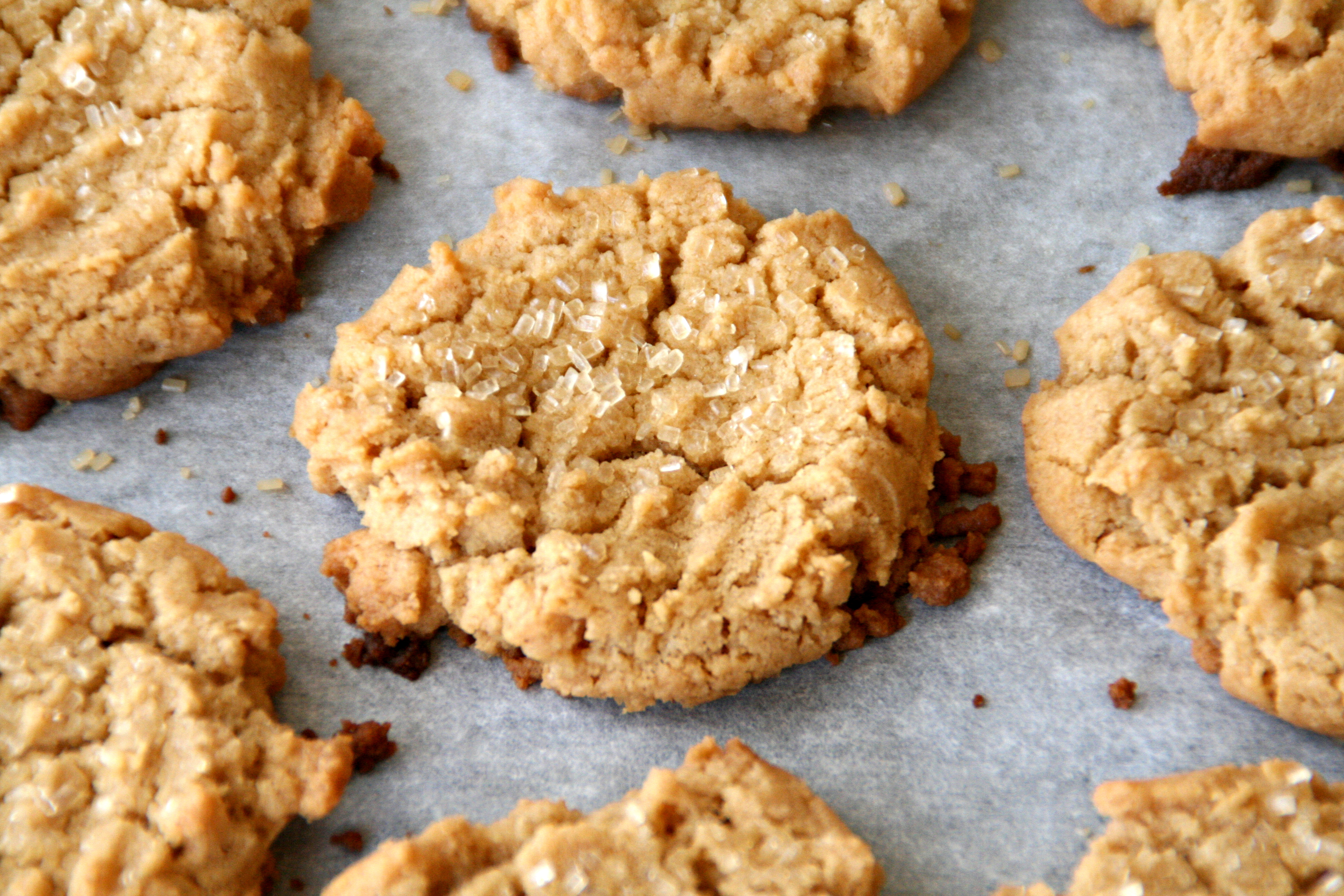 Gluten free & Vegan Peanut Butter Cookies NO BAKE